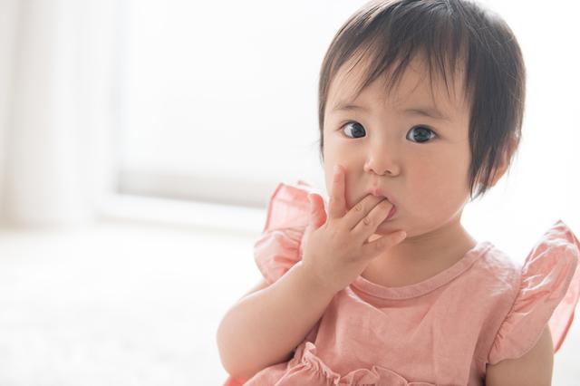 1歳の自宅幼児教育のポイント