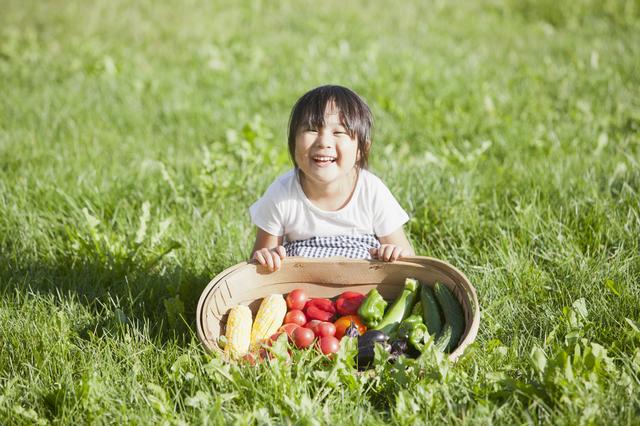 子どもに野菜を食べてもらいたい!